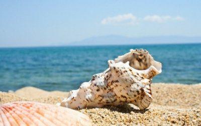Urlaub trotz Business? Mit diesem Ritual wird dein Urlaub zur Ideen-Schmiede